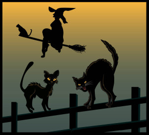 cats associated with witchcraft