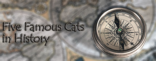 Five Famous Cats in History