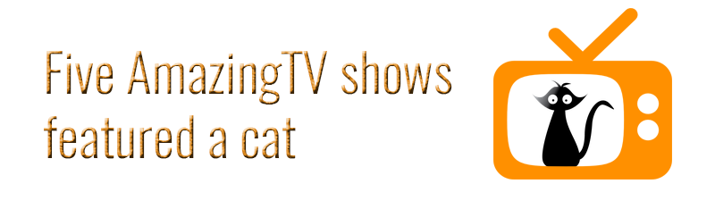 Five amazing TV shows featured a cat